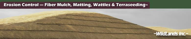 Mulch, Matting and Wattles